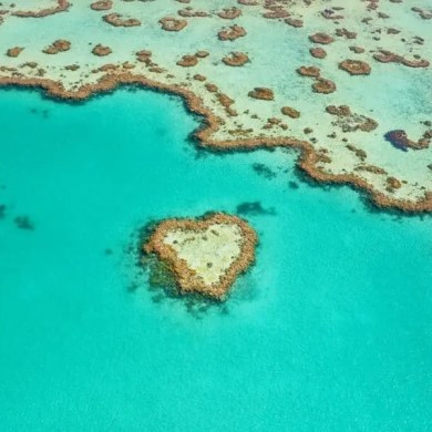 Heart Reef, Great Barrier Reef, Whitsunday Islands, Australia