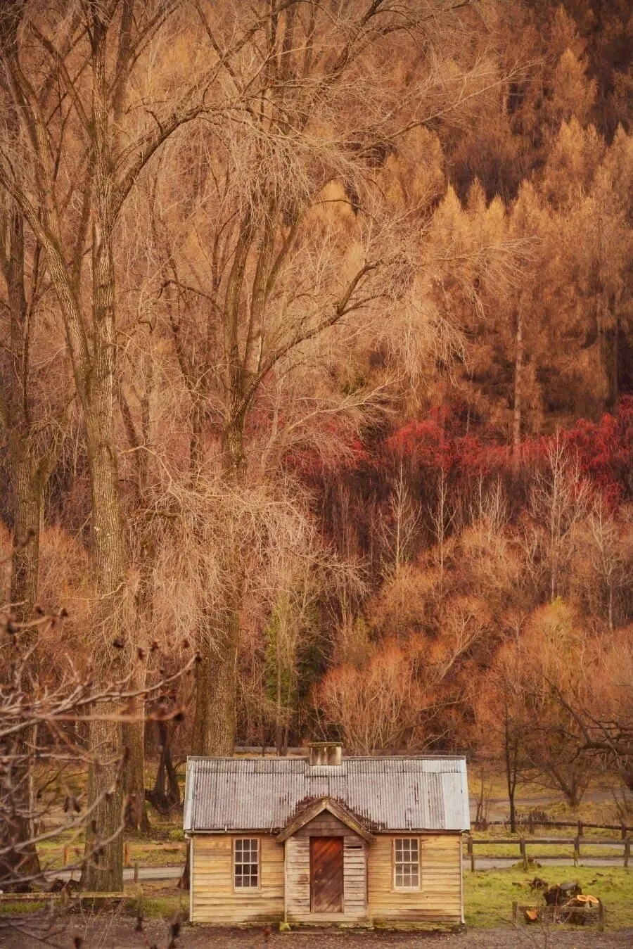Queenstown Photography Locations by The Wandering Lens (24)