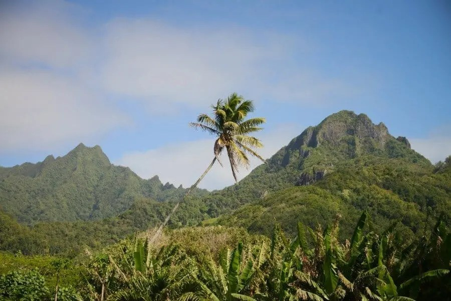 ikurangi-eco-retreat-rarotonga-cook-islands-2