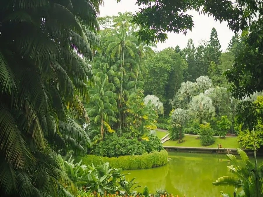 Singapore Photography Locations - Botanic Gardens by The Wandering Lens photographer Lisa Michele Burns