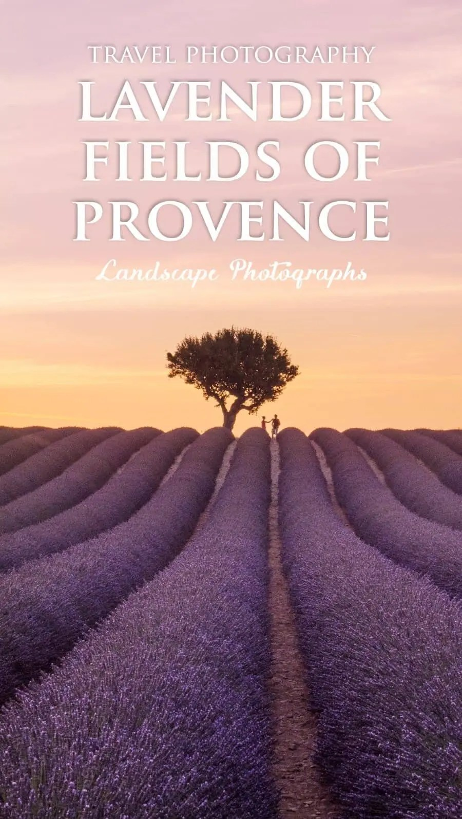 Lavender Fields in Provence France a collection of photos by The Wandering Lens