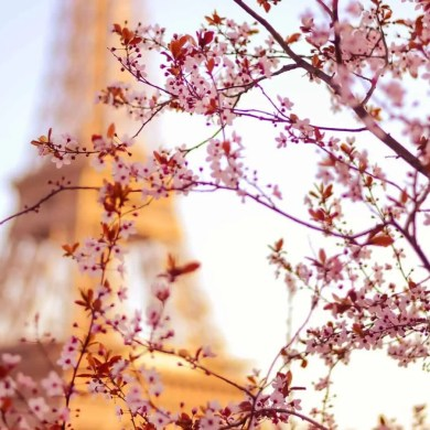 Paris, creative photography tips by Lisa Michele Burns