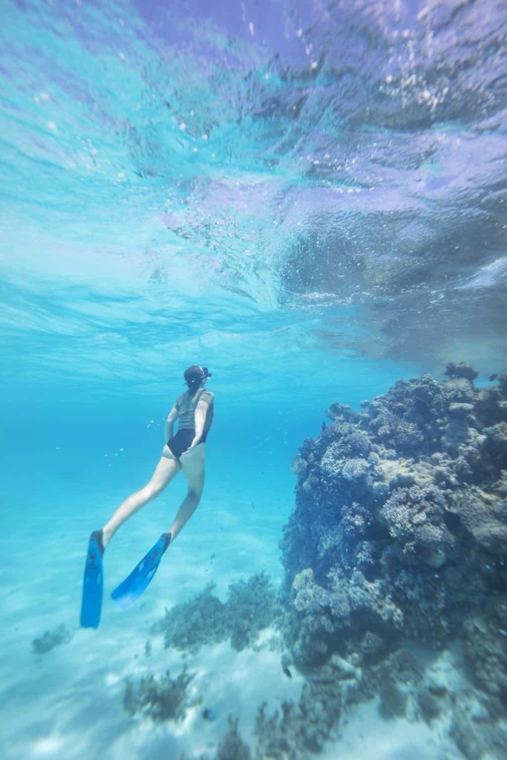 Cook Islands Underwater Photography, Aitutaki with Olympus Underwater Housing