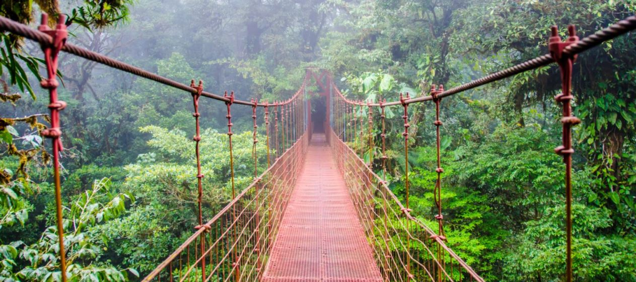 Exploring Beautiful Costa Rica: Adventures, Nature, Nightlife and a Vacation to Remember