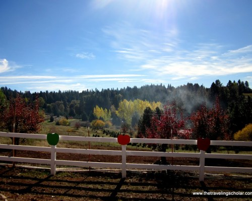 Apple Hill, El Dorado County