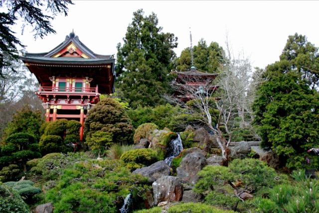Japanese Tea Garden, Golden GAte Park