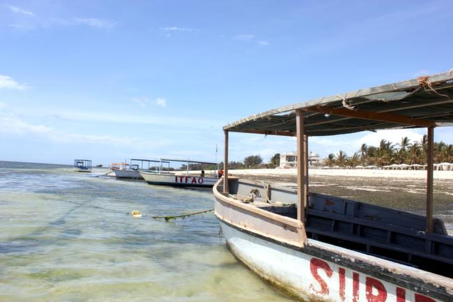 Indian Ocean Snorkeling, Bucket List Experiences