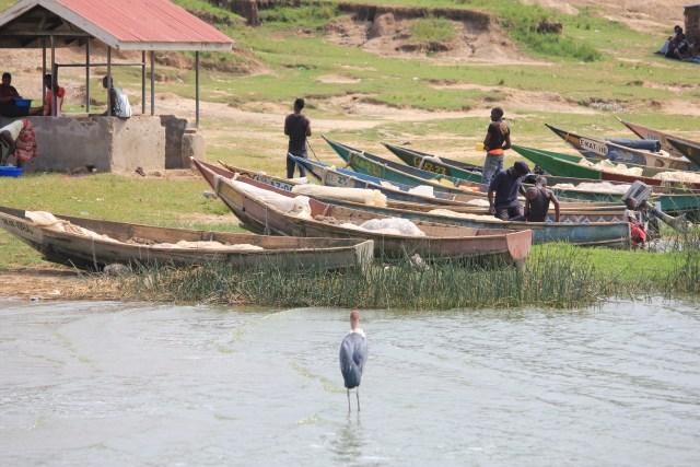Kazinga Channel Cruise, Uganda