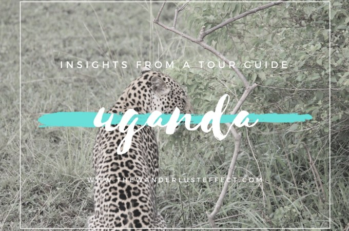 Uganda Itinerary + Planning from a Tour Guide #uganda #africa