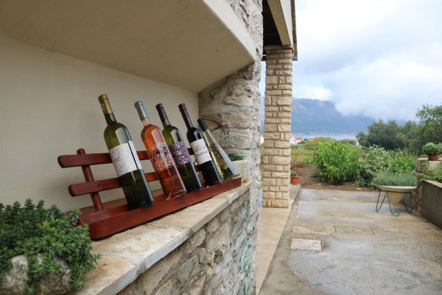 Wine Tasting in Korcula