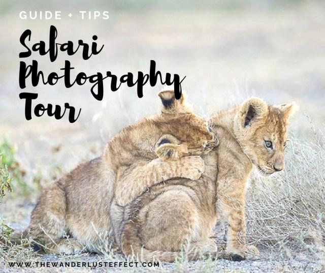 Tips for a Safari Photography