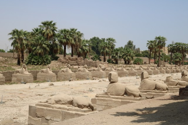 Temples in Luxor: Luxor Temple