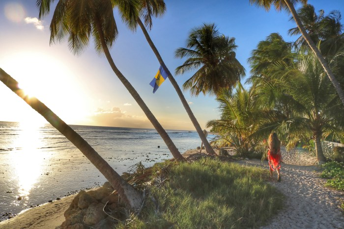10 Things to Do in Barbados
