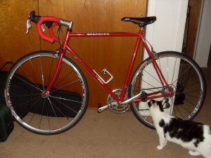 My bike...and cat