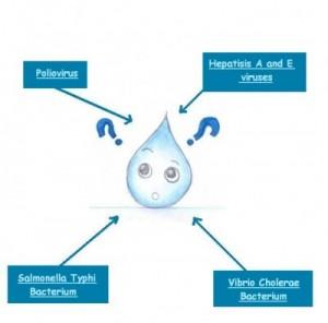 water-diseases