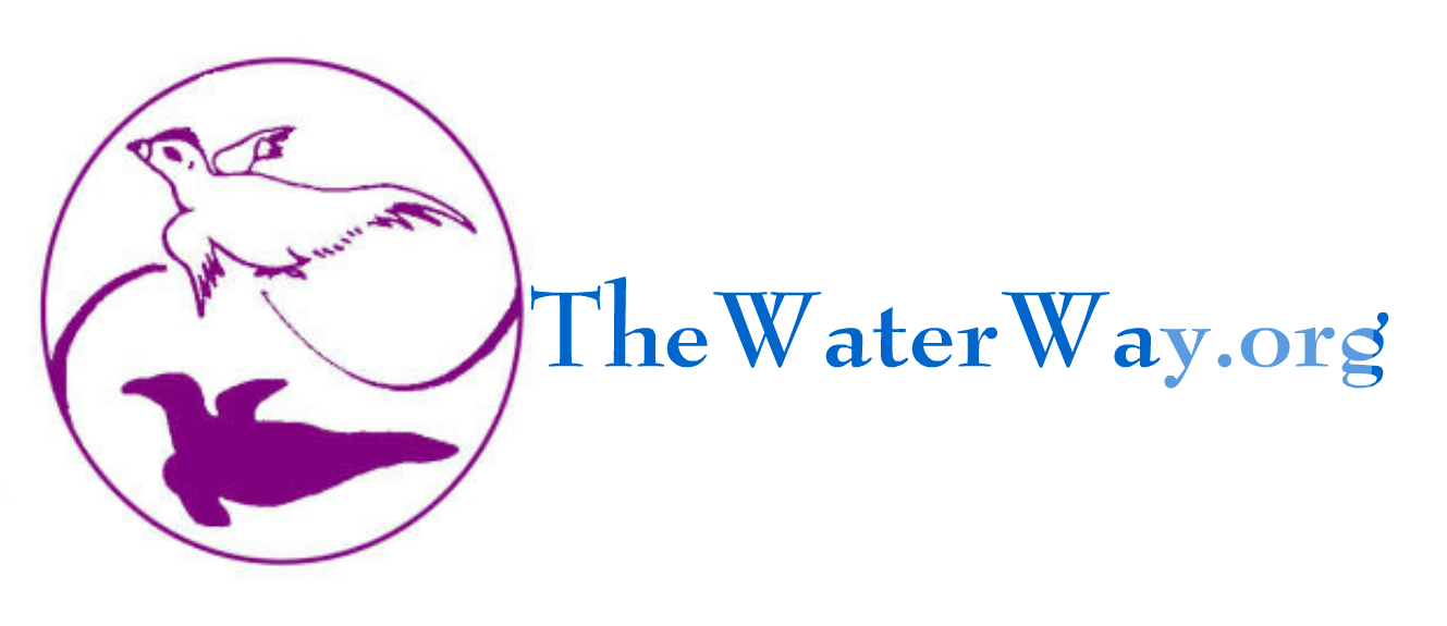 The Waterway Logo