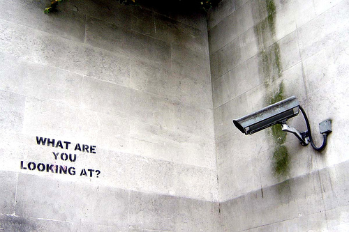 Banksy: What are you looking at? (Photo by Flickr user nolifebeforecoffee)