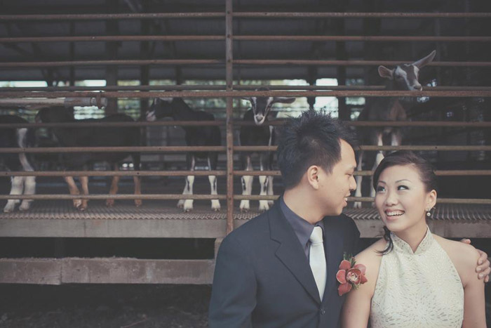 Goat farm oriental wedding in Singapore. Photography by One Eye Click. www.theweddingnotebook.com