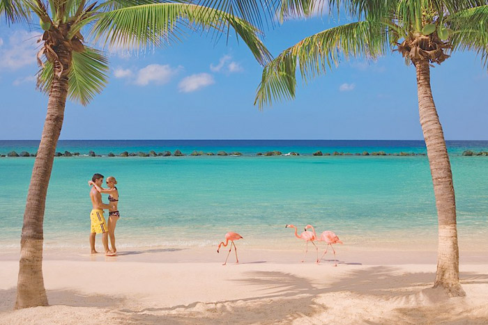 20 Honeymoon Ideas – Renaissance Aruba Resort & Casino. www.theweddingnotebook.com
