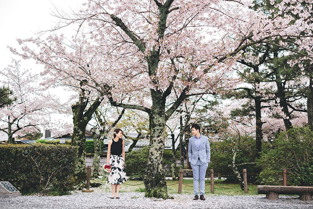 Cherry blossoms, Kyoto bridal portraits. Photo by History Studio. www.theweddingnotebook.com