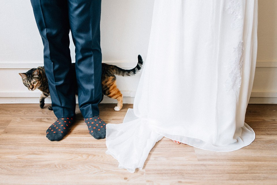 Wedding in a Cat Cafe. AndroidsinBoots Photography. www.theweddingnotebook.com