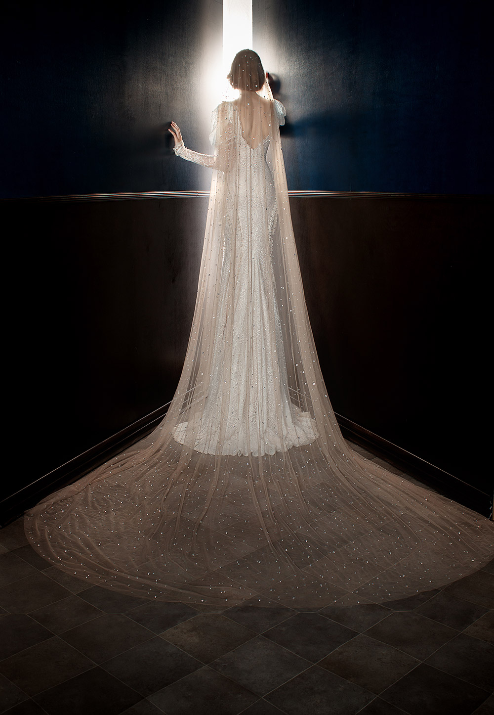 Stardust Veil - Galia Lahav Spring 2018 Bridal Collection. www.theweddingnotebook.com
