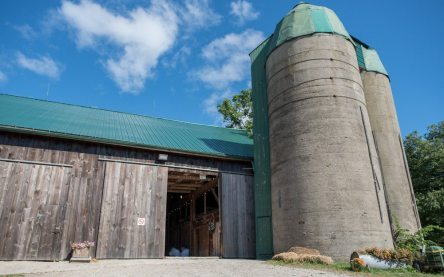 Photo: A Nash Photograph | Venue: Steckle Heritage Farm