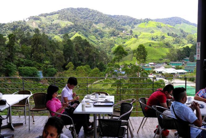 BOH Tea Plantation and Tea Center 2-JE Tunnel