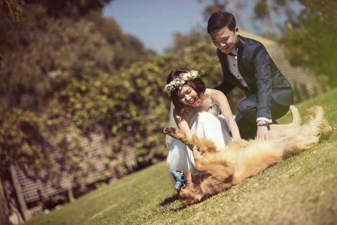 wedding photographers singapore dapper pictures