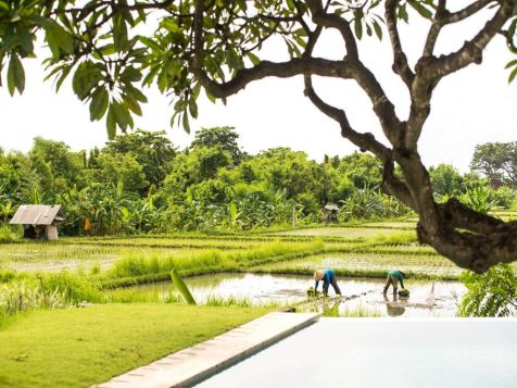 the samata village