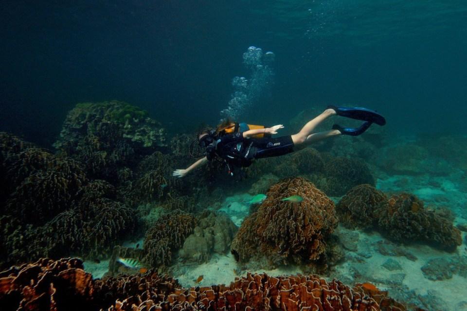 uluwatu honeymoon Underwater World