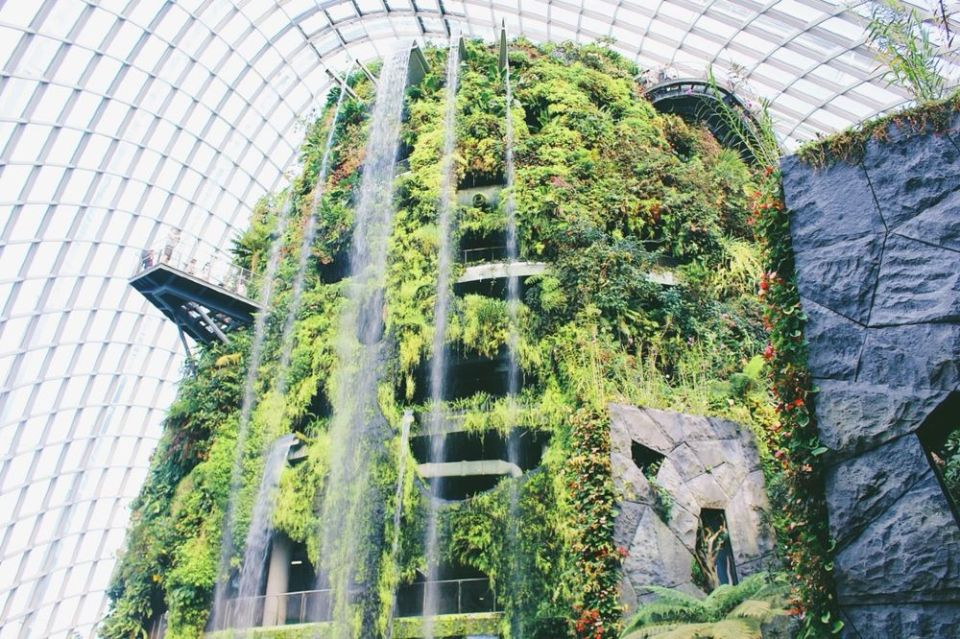 Cloud Forest Singapore Gardens by the Bay