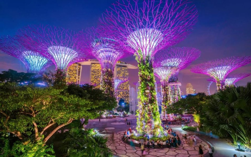 Gardens by the Bay Night Time SG
