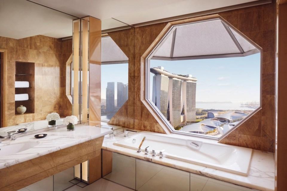 Ritz Carlton Bathroom View