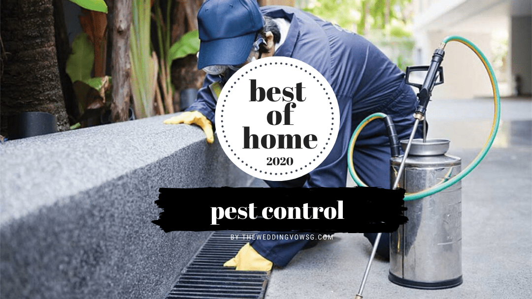 best pest control singapore services
