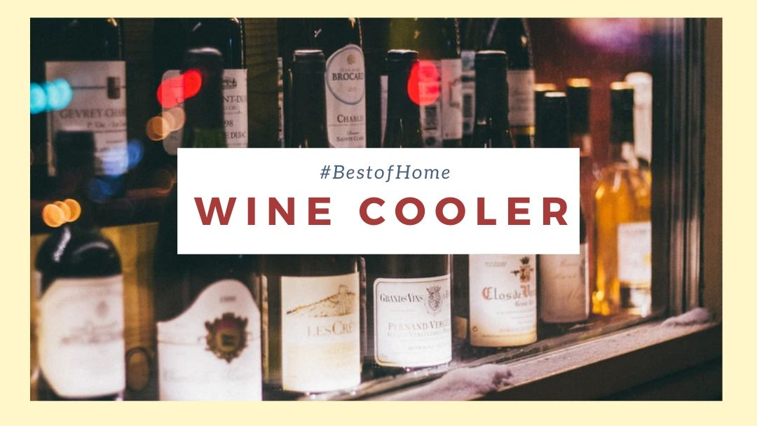 Best Wine Coolers in Singapore