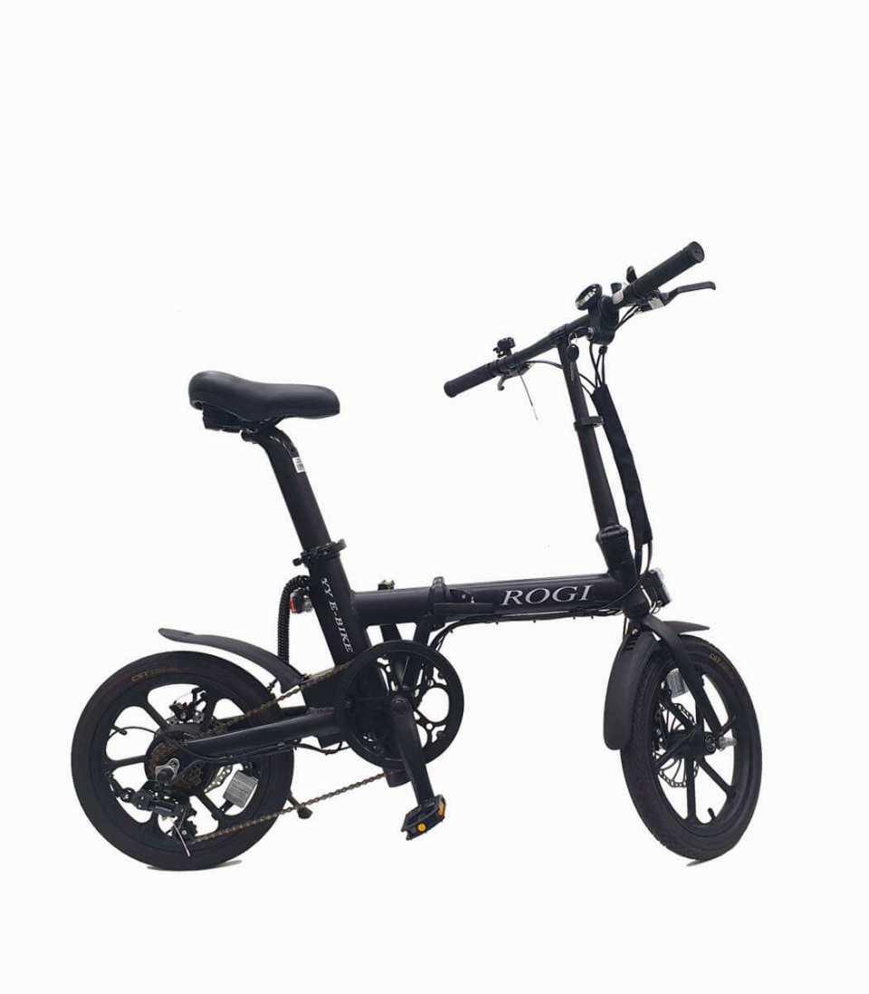 ROGI Electric Bike