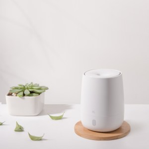 10 Best Diffusers in Malaysia