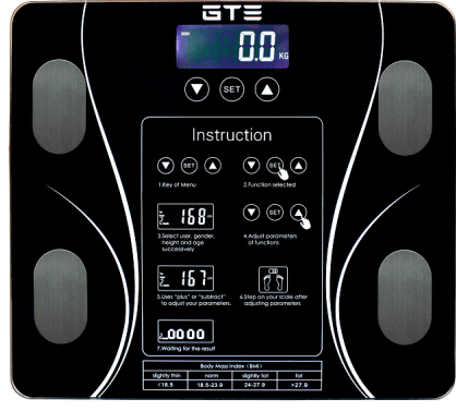 GTE English Screen Digital weighing scales