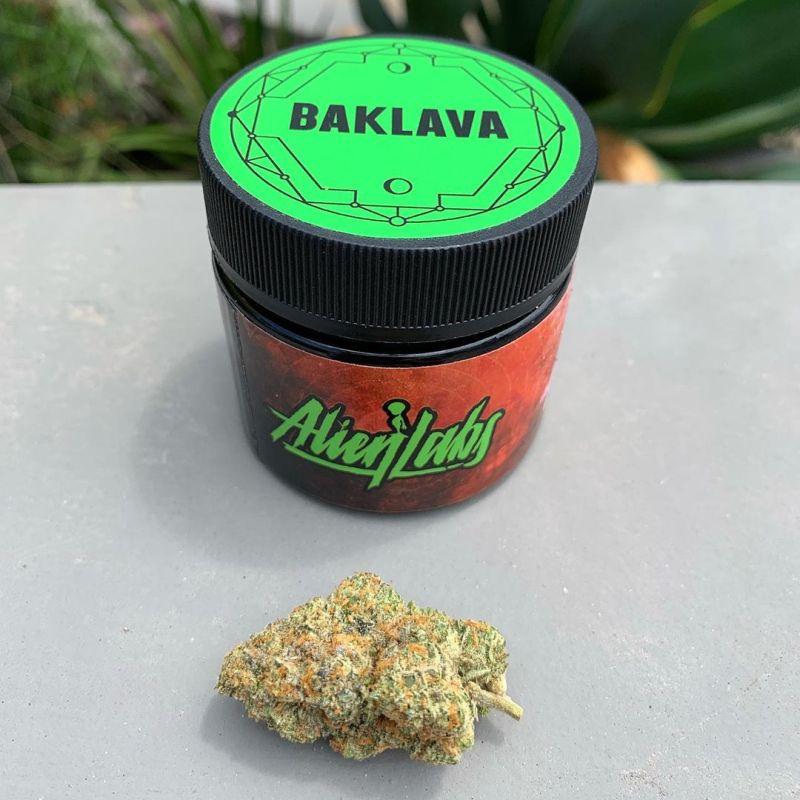 a272567da5259f7de81447aada6bed1c The Weed Blog - Cannabis News, Culture, Reviews & More