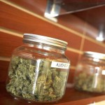 Marijuana Dispensaries Jar
