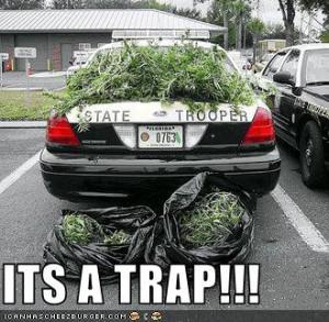 Its a trap!
