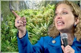 The Head of the Democratic Party is a Huge Hypocrite on Marijuana