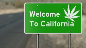 California's 'outlaw' marijuana culture faces a harsh reckoning: Legal weed