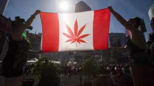 Canadian Senate passes pot bill, paving way for legal weed in 8 to 12 weeks