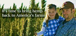 U.S. Senate Votes To Legalize Hemp After Decades-Long Ban Under Marijuana Prohibition