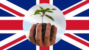 United Kingdom Legalizes Medical Cannabis