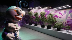 Giant bong, huggable buds: Marijuana museum opens in Vegas