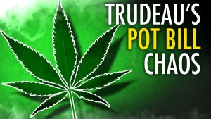 With its patchwork of half-baked, absurd laws, Canada isn't ready for legal weed