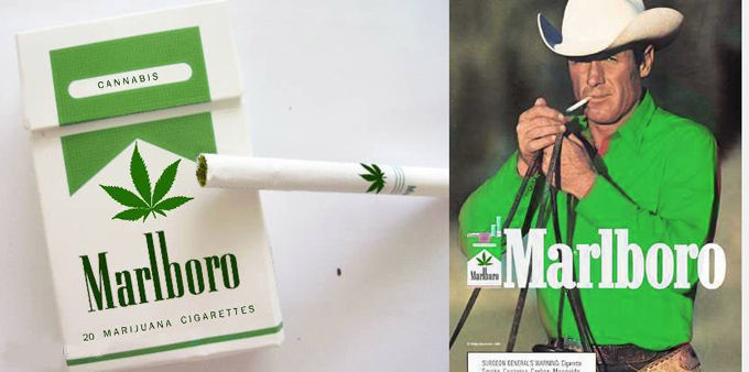 Marlboro maker 'evaluating opportunities' in cannabis industry